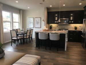 Portarosa – A New Townhome Community in Brea off Kraemer near Birch Hills Golf Course