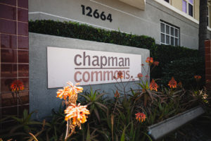 Chapman Commons – November 2020 Market Update
